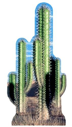 Cactus Grupo 152cm Figura de Cartón Tamaño real