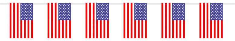 Colorines de Bandera EE.UU. 23 x 15 cm 10 Banderas de Tela