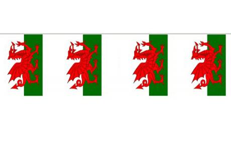 Día de San David - Fiesta de Gales
