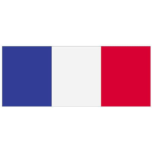Bandera De Francia Pvc Fiesta Signo Decoración 60 Cm X 24 Cm