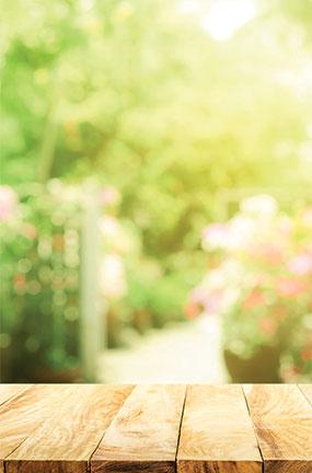 Diseño De Vista De Jardín Grande Pvc Pastel Fotografía Telón De Fondo 137 Cm X 90 Cm