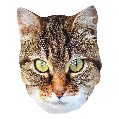Mascarilla De Cartón De Gato