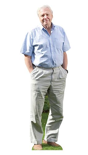David Attenborough Mini Recorte De Cartón 90Cm
