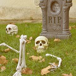 Decoraciones De Halloween Al Aire Libre